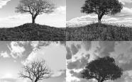 seasons changing